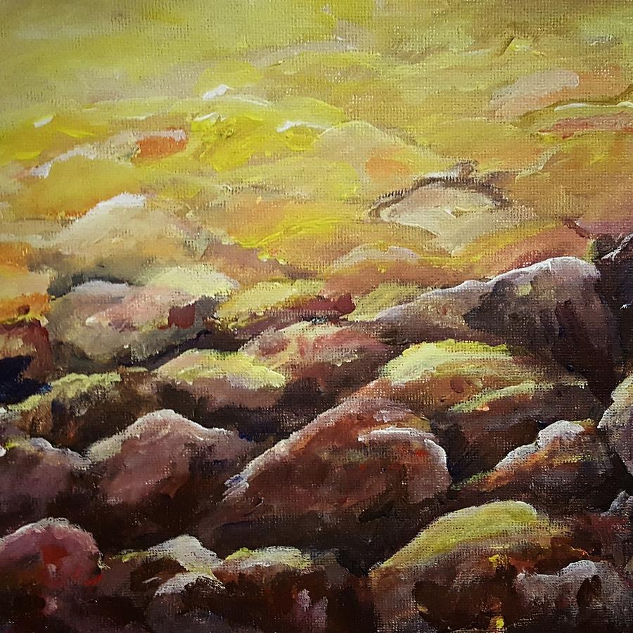 Rocks                    20202 by Cheryl Nancy Ann Gordon