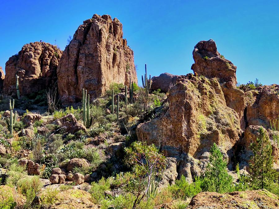Rocky HIghrises in the Sonoran Desert by Judy Kennedy