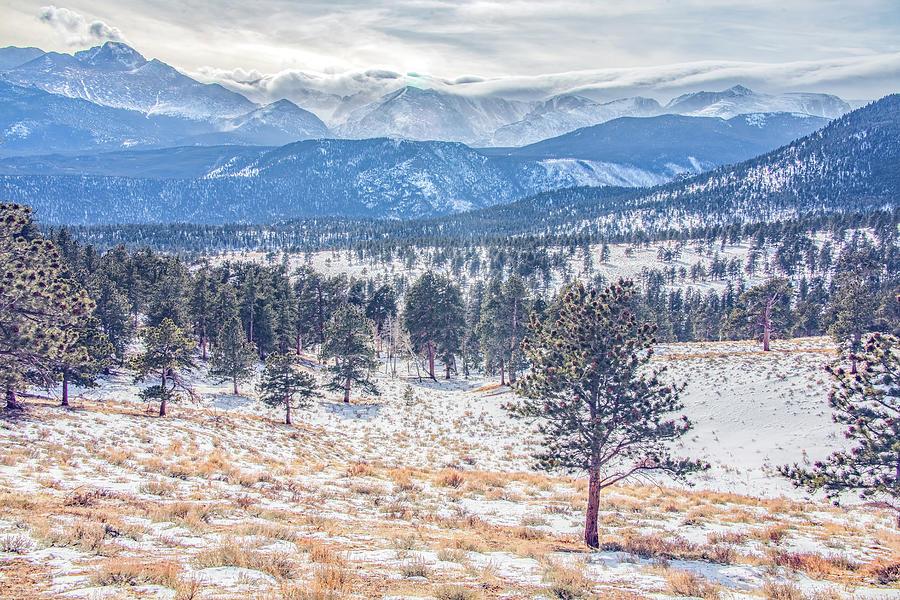 Rocky Mountain Winter by Marcy Wielfaert