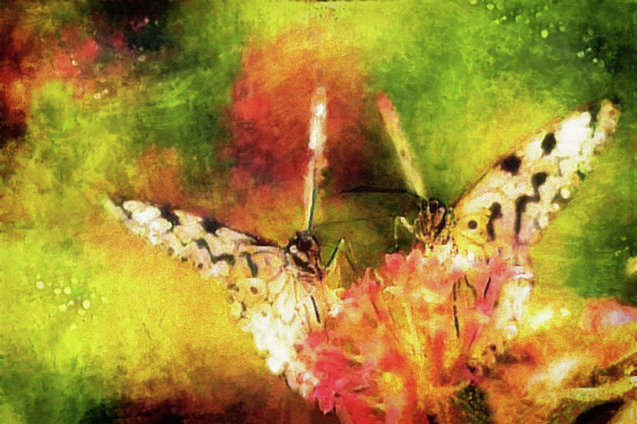 Romantic Butterfly Rendezvous Digital Art