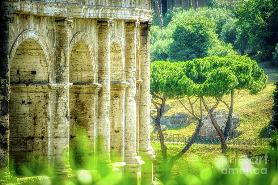 Archways Photograph - Rome and Italy Landmark - Colosseum Closeup Windows by Stefano Senise