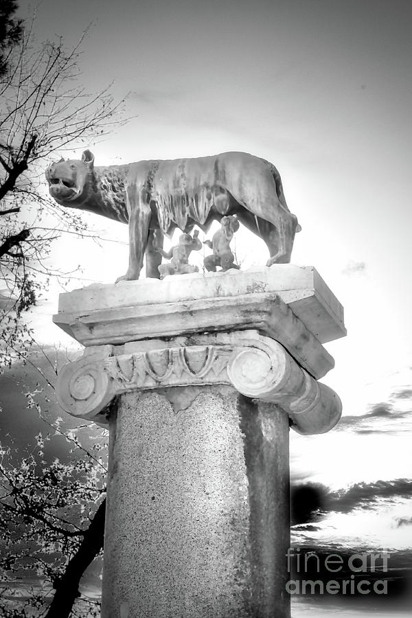 Romulus And Remus Photograph - Rome BW - Capitoline Wolf bronze statue with Romulus and Remus by Stefano Senise
