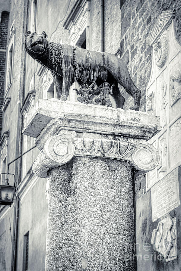 Romulus And Remus Photograph - Rome BW - Capitoline Wolf sculpture with Romulus and Remus by Stefano Senise