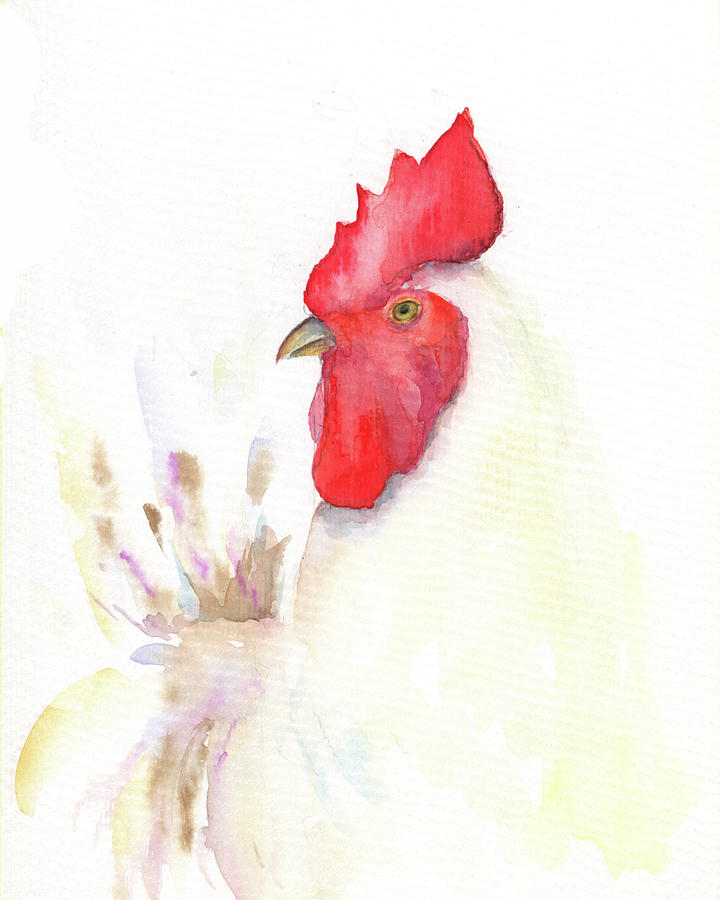 Rooster Original Watercolor Painting Rooster Kitchen Decor Chicken Paintings Kitchen Decor Barnya Painting By Watercolor Poetry