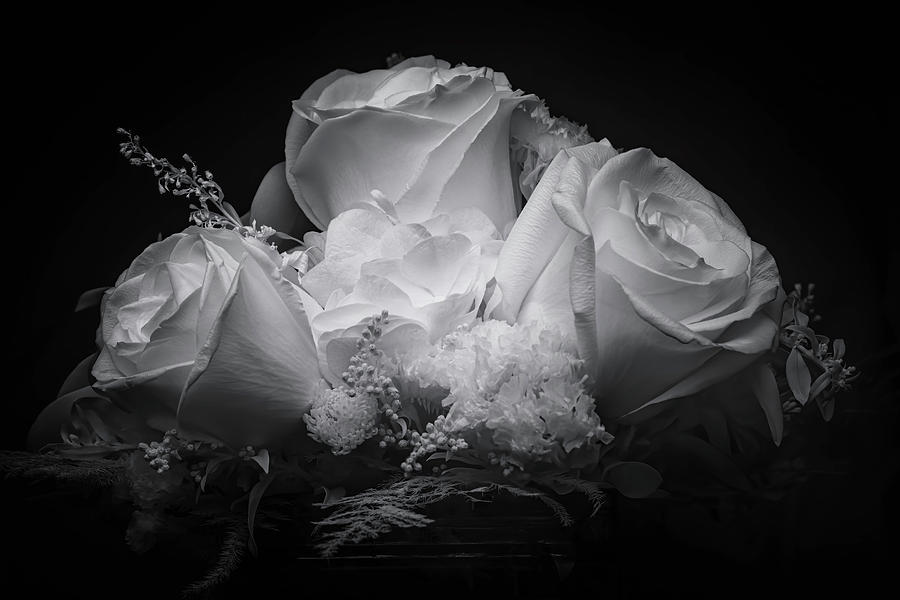 Rose Bouquet Black and White by Harold Coleman