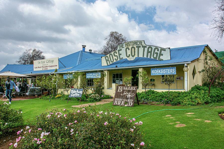 Rose Cottage by Douglas Wielfaert