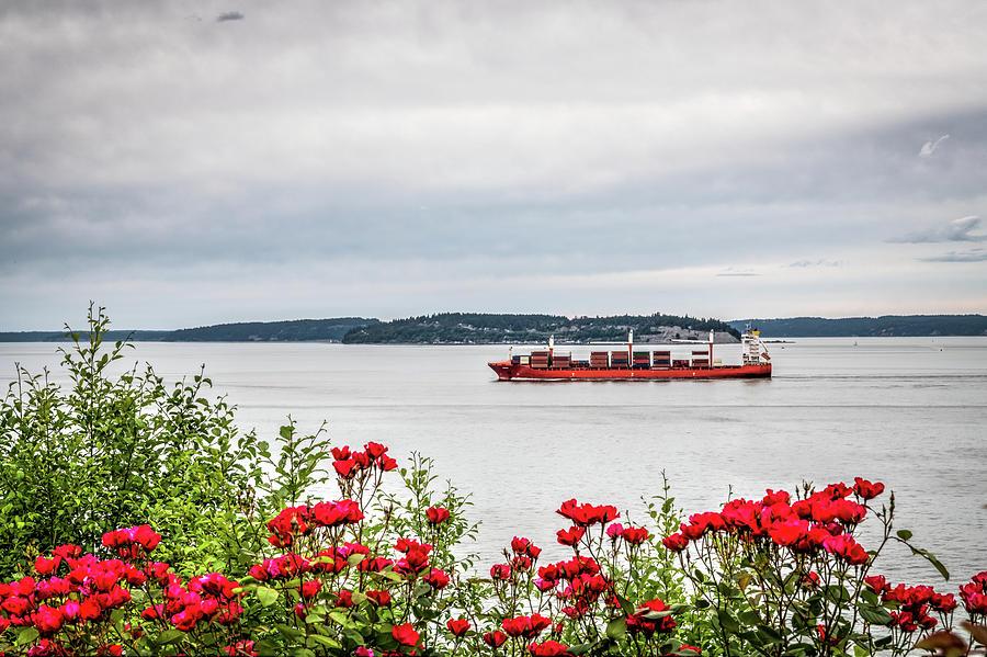 Rose Garden And Cargo Ship Photograph