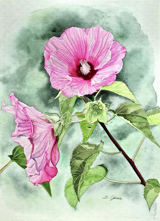 Rose of Sharon by Sonja Jones