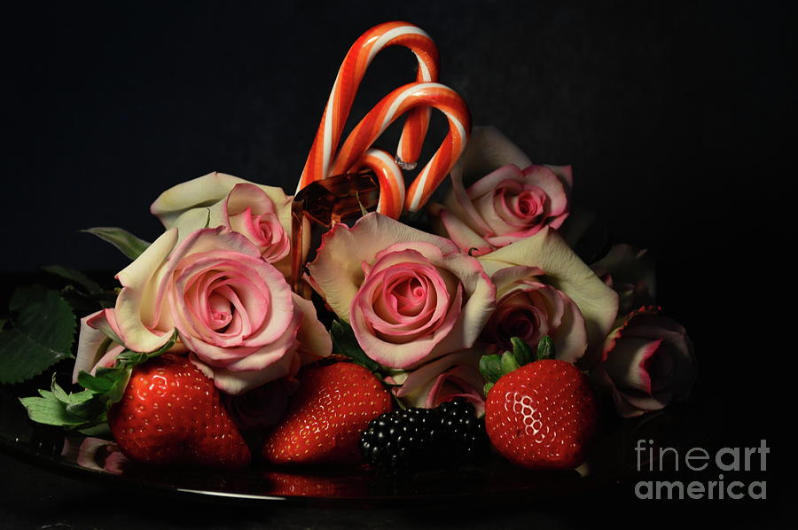 Roses and Candy Canes by Diana Mary Sharpton