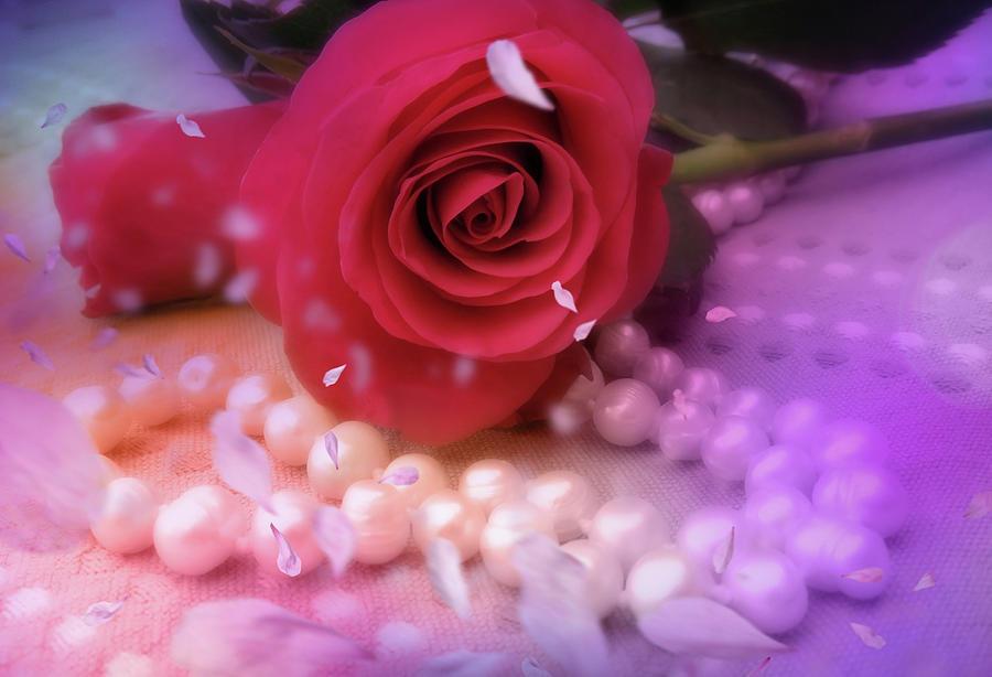 Roses Love Pearls Mixed Media