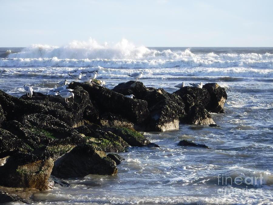 LONG BEACH ROUGH WINTER WATERS by BARBRA TELFER