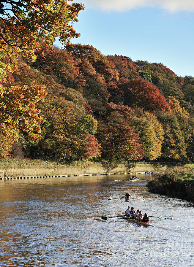 Rowing on the river Wear in autumn by Bryan Attewell