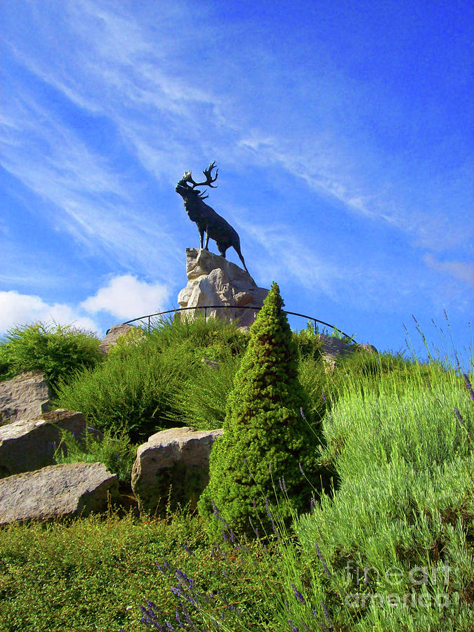 Monument Photograph - Royal Newfoundland Regiment by Mary Mikawoz