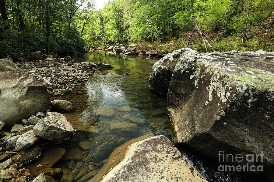 Ruchland Creek by Garry McMichael