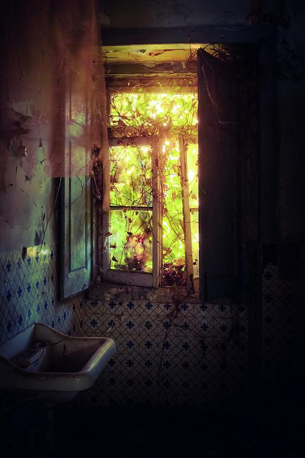 Ruined Bathroom by Carlos Caetano