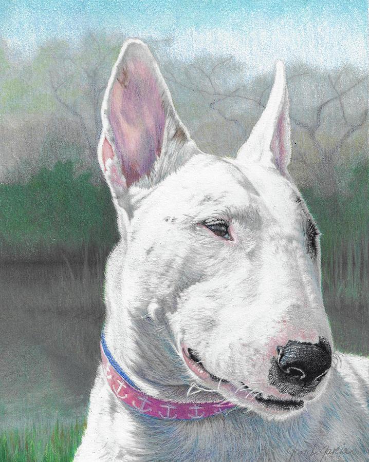 Bull Terrier Drawing - Sadie Girl by Joan Garcia