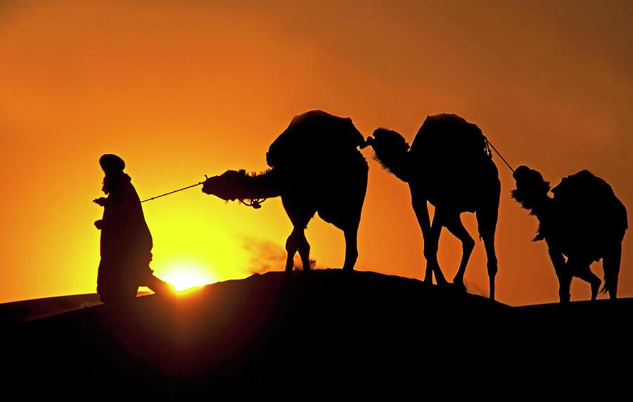 Sahara Sunset Photograph