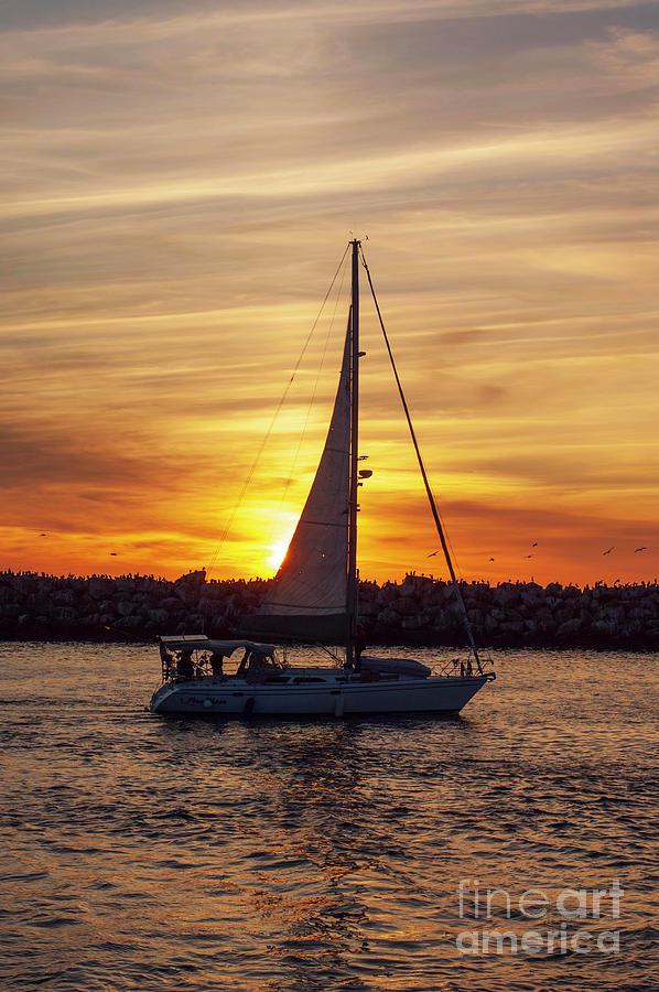 Sail Boat Cruise Photograph