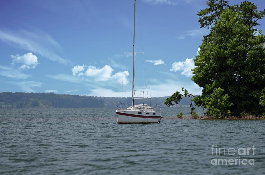 Sailboat Moored On Lake Hartwell Photograph