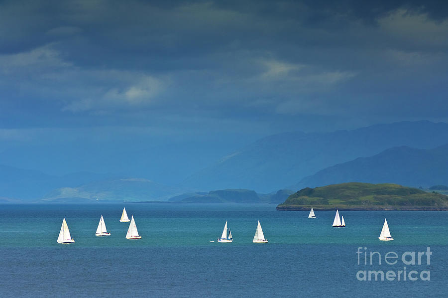Sailing Boats off the Island Of Mull, Scotland by Neale And Judith Clark