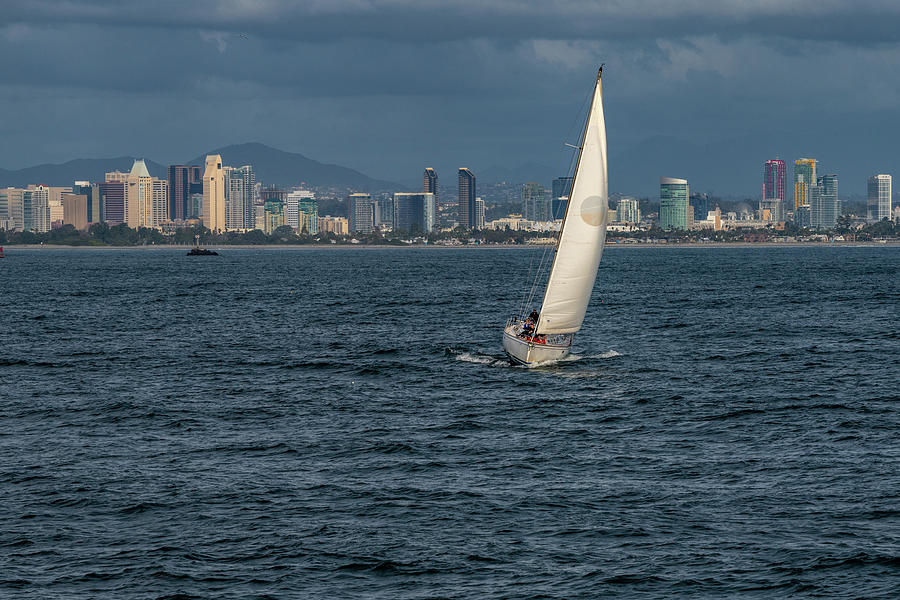 Sailing in San Diego Bay by Philip Rodgers
