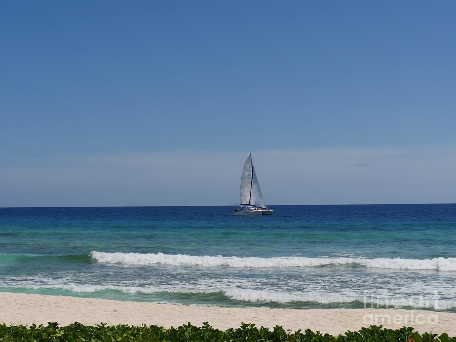 Sailing The Caribbean Sea Photograph