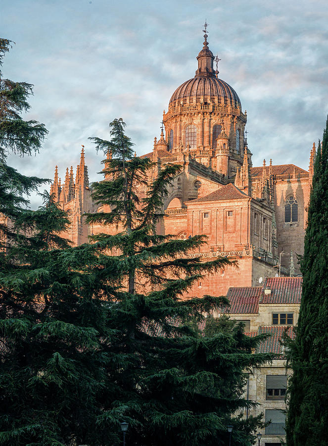 Salamanca Spain Cathedral Photograph