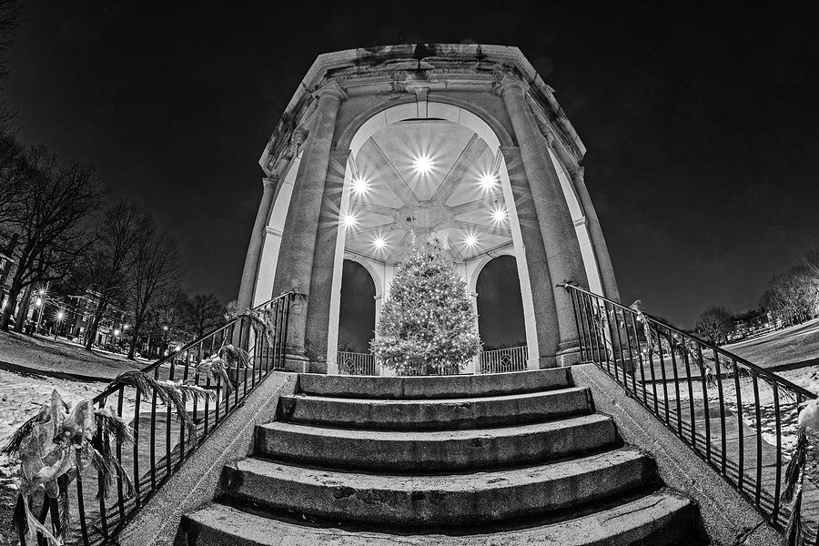 Salem Common Bandstand Christmas Tree Looking Up Black and White by Toby McGuire
