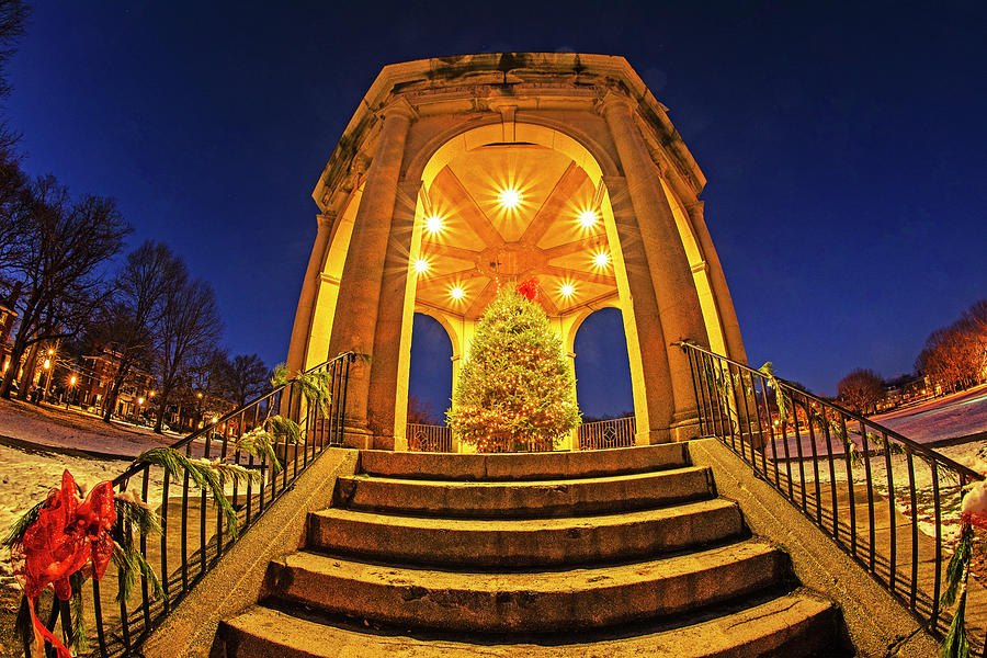 Salem Common Bandstand Christmas Tree Looking Up by Toby McGuire