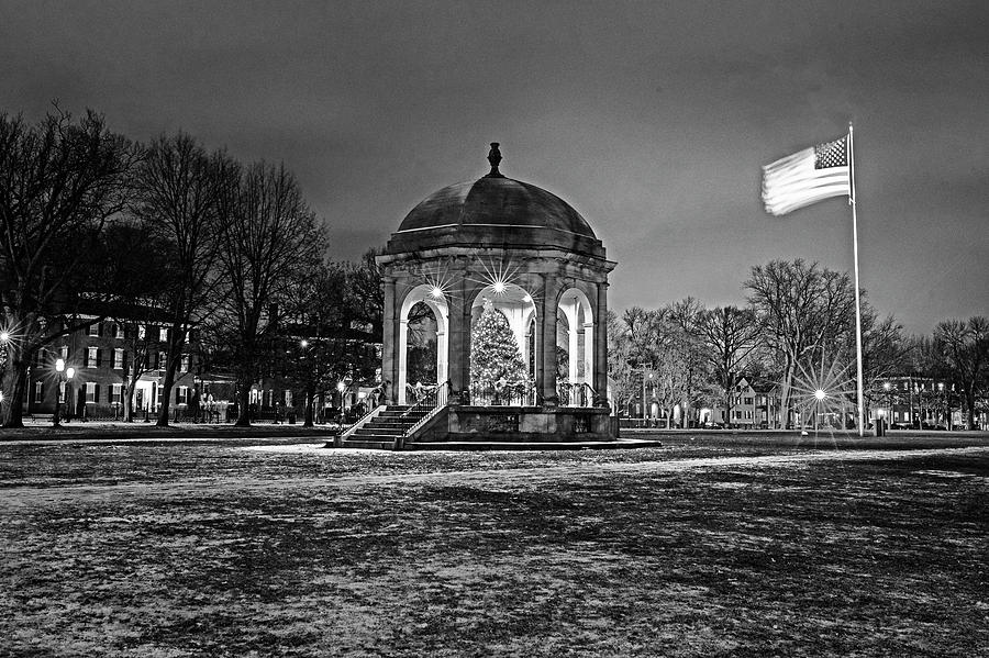 Salem Common Christmas Tree Salem MA Winter Black and White by Toby McGuire