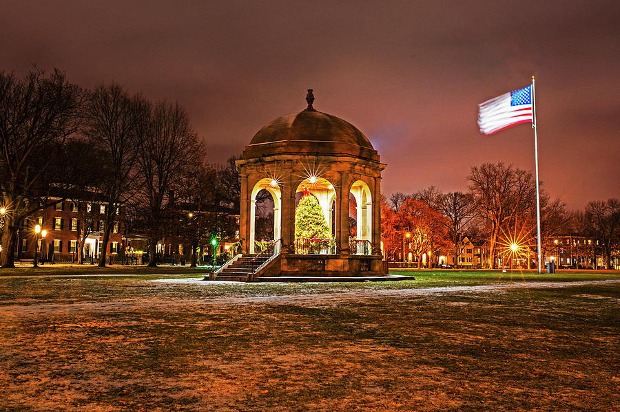 Salem Common Christmas Tree Salem MA Winter by Toby McGuire