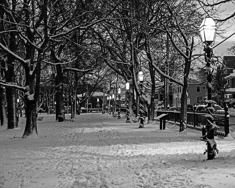 Salem MA Salem Common Lanterns Winter Snow Christmas Black and White Snow by Toby McGuire