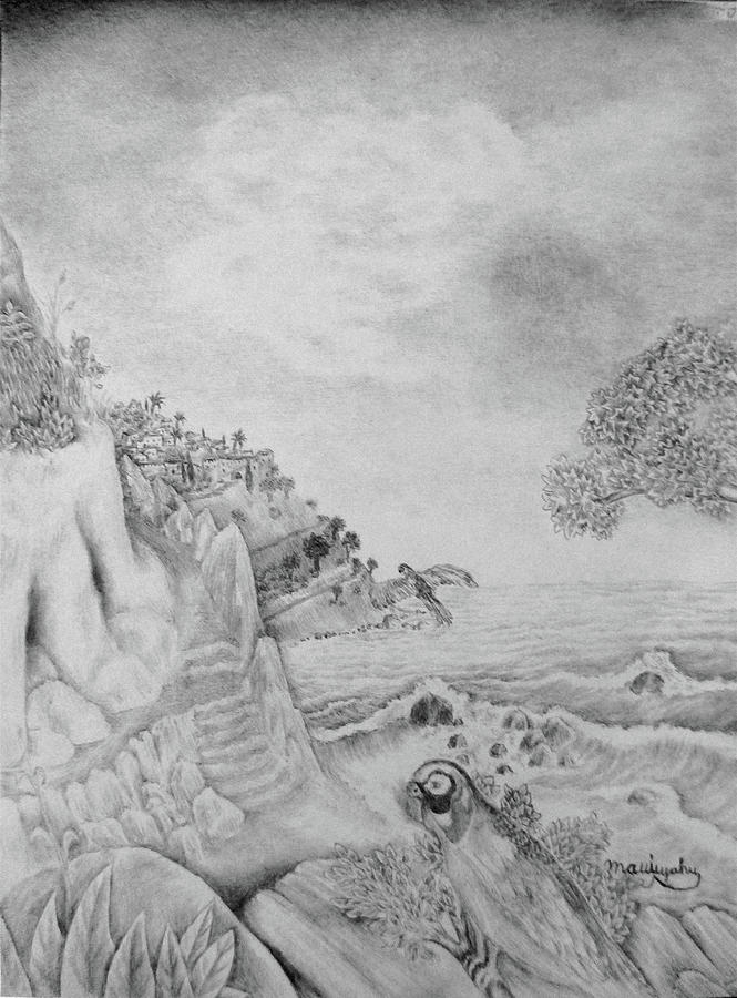 Bird Drawing - Sall A Kakas by Mattit Yahu