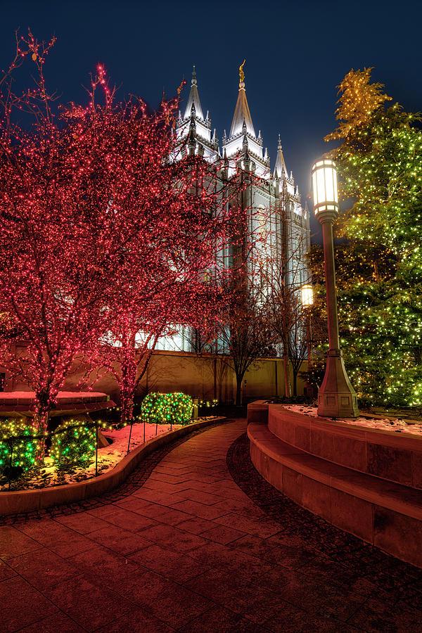 Salt Lake LDS Temple at Christmas by Michael Ash