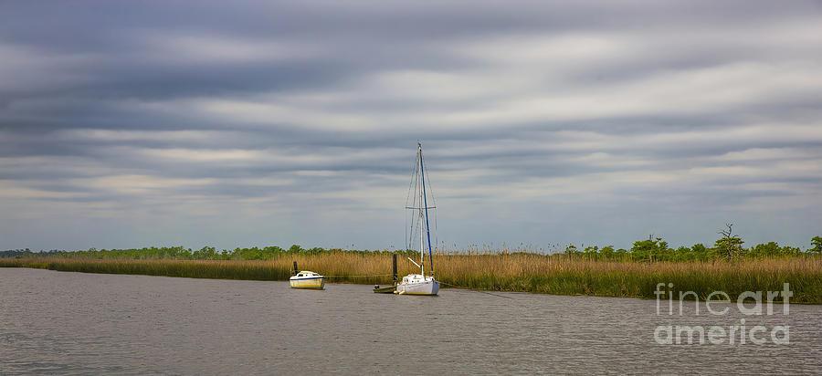 Florida Photograph - Salt Marsh At Apalachicola, Florida by Felix Lai