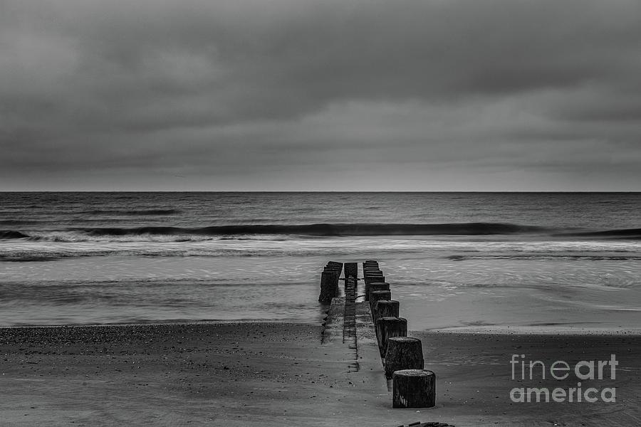 Salt Water Solitude Photograph