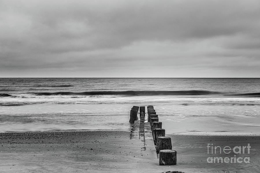 Salty Shore Solitude Photograph