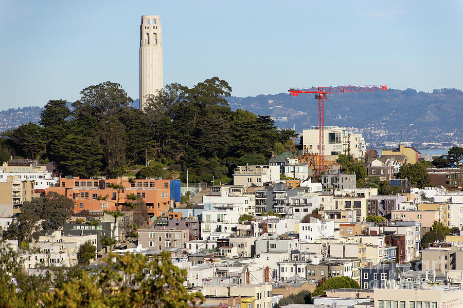 San Francisco Coit Tower Telegraph Hill Viewed From Atop Vallejo Street R1821 by San Francisco
