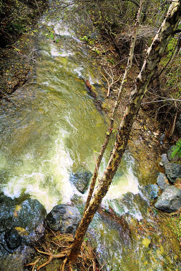 San Luis Obispo Creek Birds Eye View Photograph