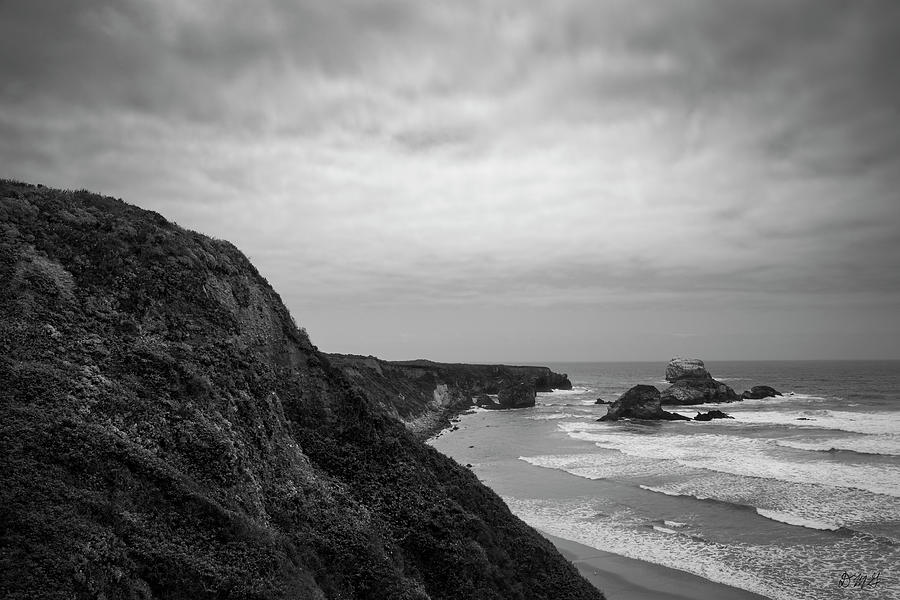 Sand Dollar Beach IV BW by David Gordon