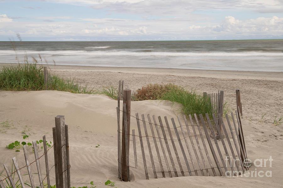 Sand Shores - Isle Of Palms - Charleston South Carolina Photograph
