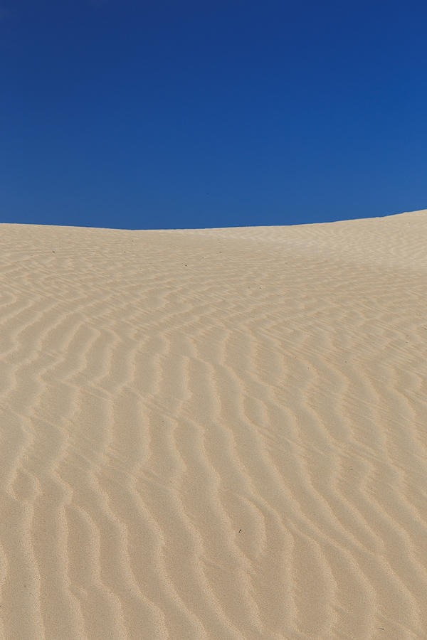 Sand Waves Photograph by Phil Copp