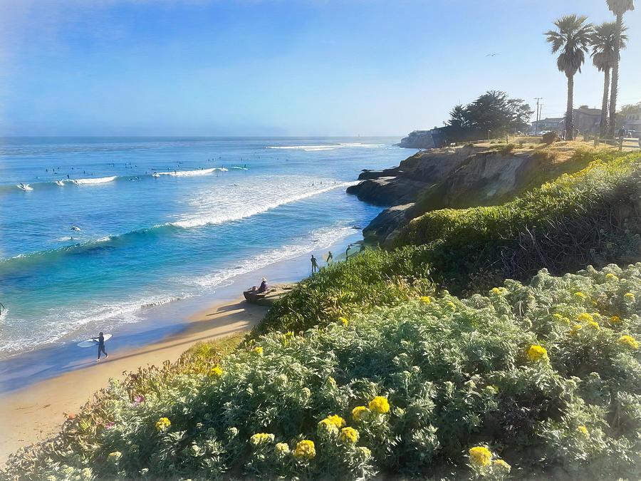 Santa Cruz Springtime Photograph