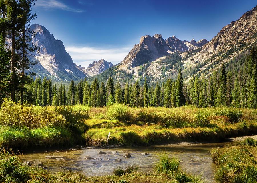 Sawtooth Mountain Meadow Photograph