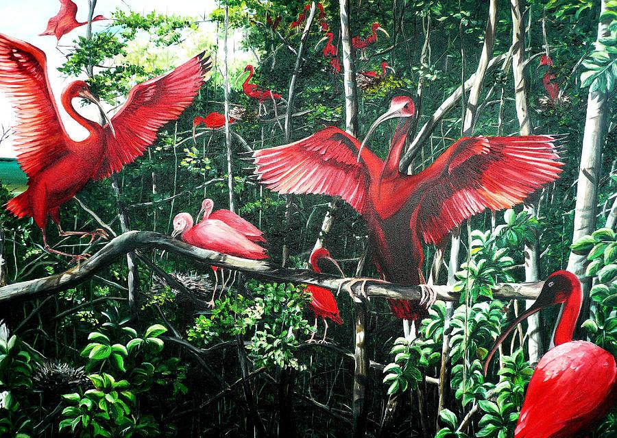 Scarlet Ibis Painting by Karin  Dawn Kelshall- Best