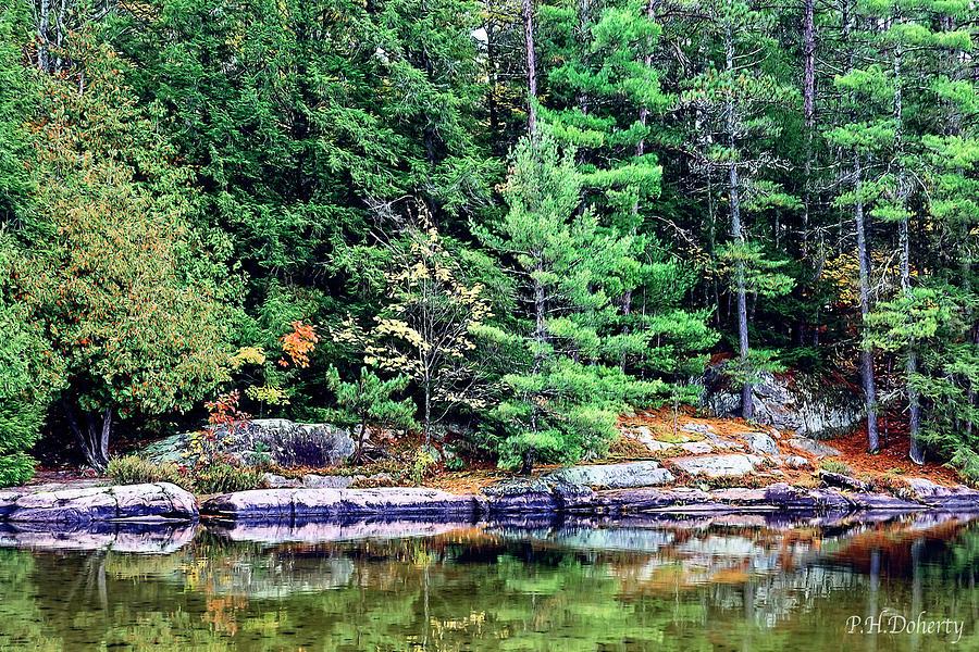 Scenic Shoreline Photograph