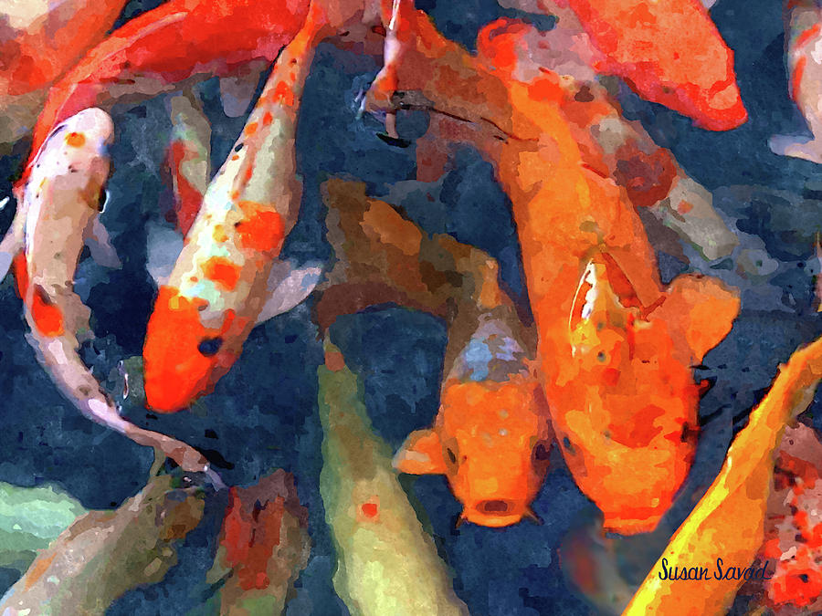 School of Koi by Susan Savad