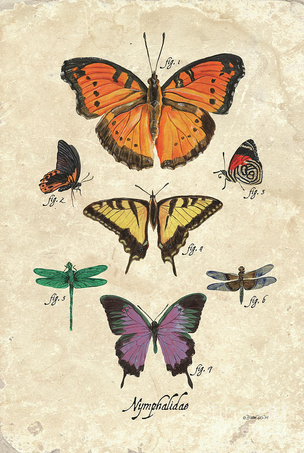 Scientific Butterflies 1 Painting