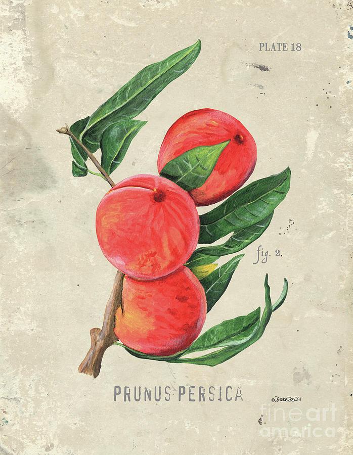 Scientific Fruit 2 Painting
