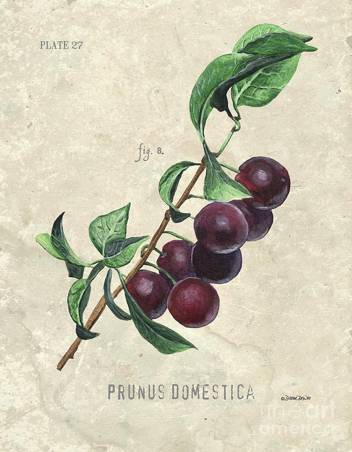 Scientific Fruit 3 Painting